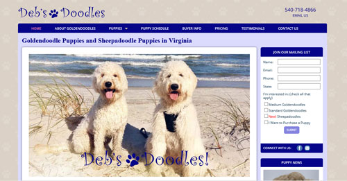 Custom Websites from Kindred Tails
