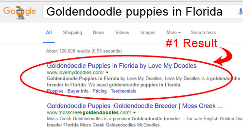 SEO for dog breeding websites with Kindred Tails